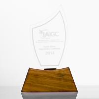 Metal badge trophies-Perspex-Trophy