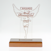 metal badge trophies-perspex trophy
